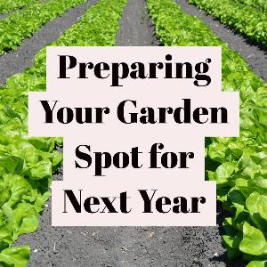Let's talk for a minute about preparing your garden spot for next year. . .
