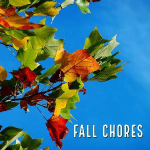 Let's talk for as minute about last minute fall chores. .