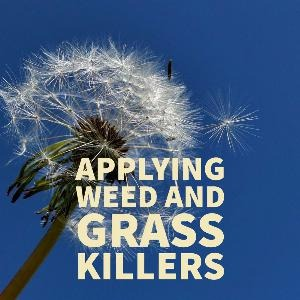 Let's talk for a minute about applying weed and grass killers. . .